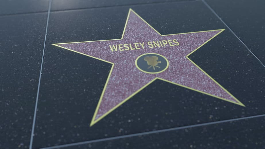 Wesley snipes Tax Evasion